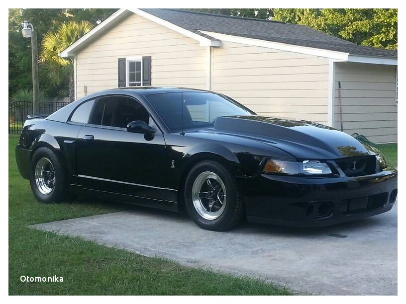 03 04 Mustang Cobra for Sale In Nc Beautiful 03 04 Svt Cobra Mustang W Rts Weld Wheels